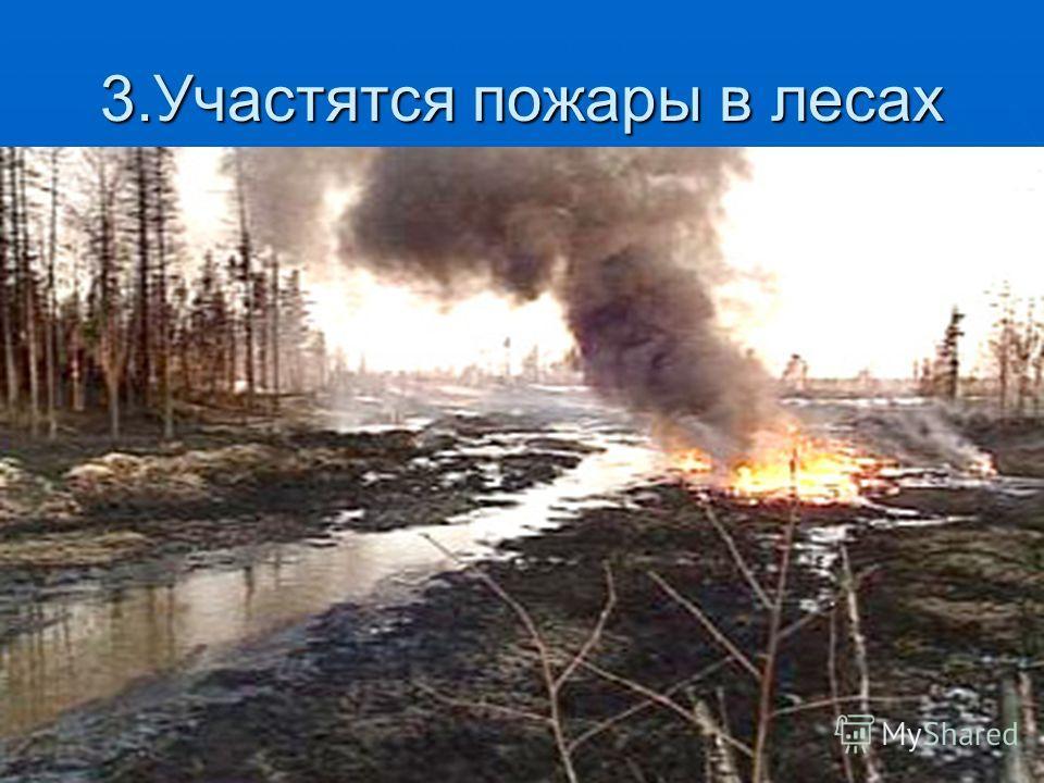 3.Участятся пожары в лесах
