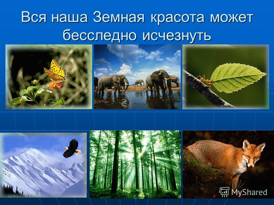 Вся наша Земная красота может бесследно исчезнуть