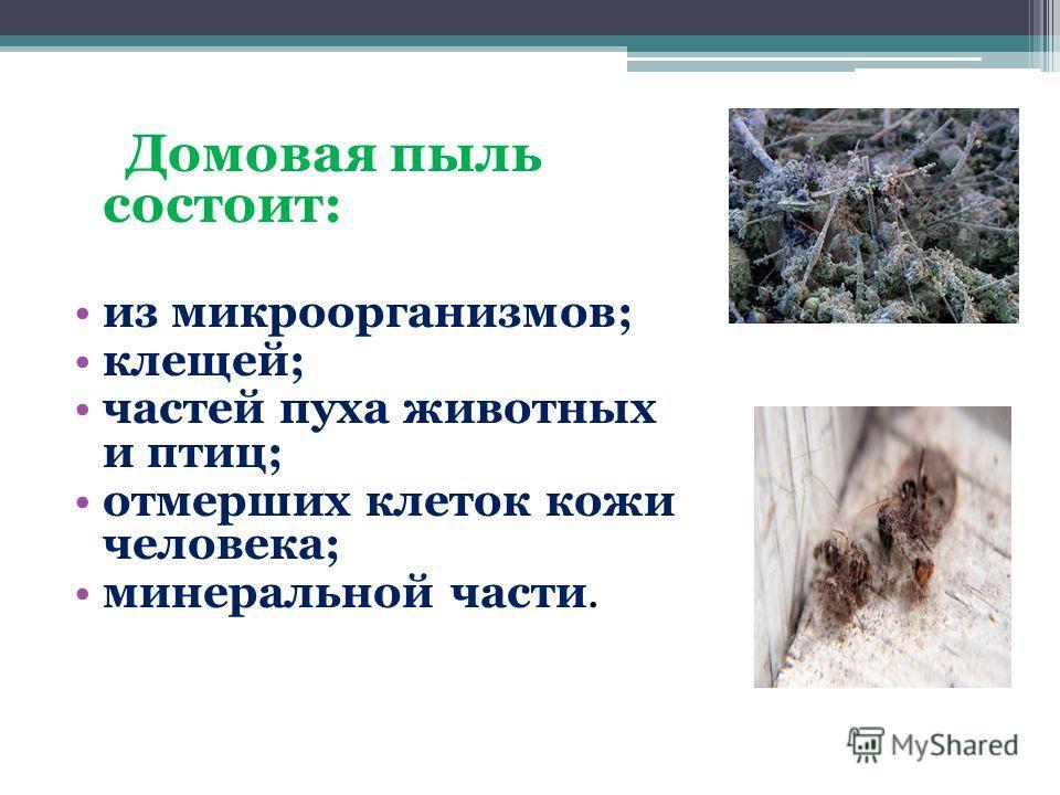 Домовая пыль состоит: из микроорганизмов; клещей; частей пуха животных и птиц; отмерших клеток кожи человека; минеральной части.