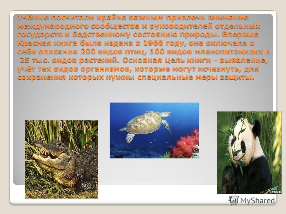 Учёные посчитали крайне важным привлечь внимание международного сообщества и руководителей отдельных государств к бедственному состоянию природы. Впервые Красная книга была издана в 1966 году, она включала в себя описание 200 видов птиц, 100 видов мл