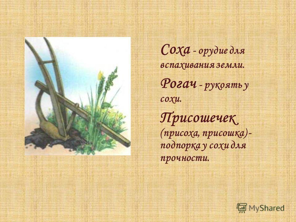 Соха - орудие для вспахивания земли. Рогач - рукоять у сохи. Присошечек (присоха, присошка) - подпорка у сохи для прочности.