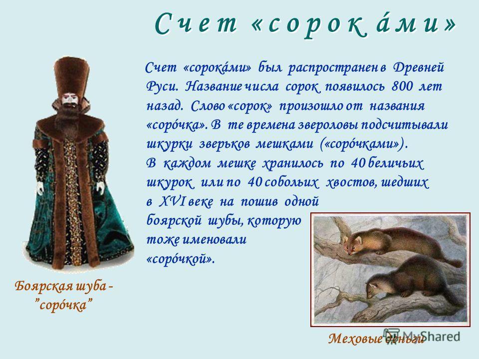 Счет «сорокáми» был распространен в Древней Руси. Название числа сорок появилось 800 лет назад. Слово «сорок» произошло от названия «сорóчка». В те времена звероловы подсчитывали шкурки зверьков мешками («сорóчками»). В каждом мешке хранилось по 40 б