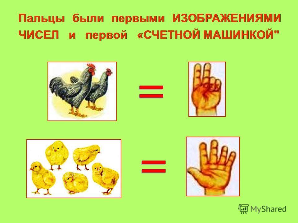 Пальцы были первыми ИЗОБРАЖЕНИЯМИ ЧИСЕЛ и первой «СЧЕТНОЙ МАШИНКОЙ
