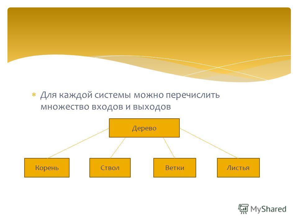 Для каждой системы можно перечислить множество входов и выходов Дерево ВеткиЛистьяСтволКорень
