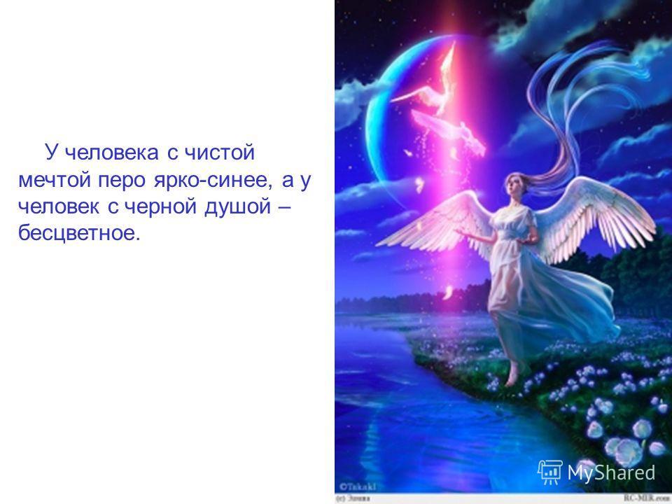 У человека с чистой мечтой перо ярко-синее, а у человек с черной душой – бесцветное.