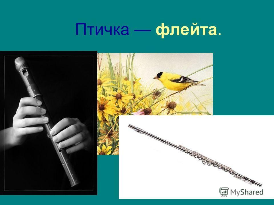 Птичка флейта.