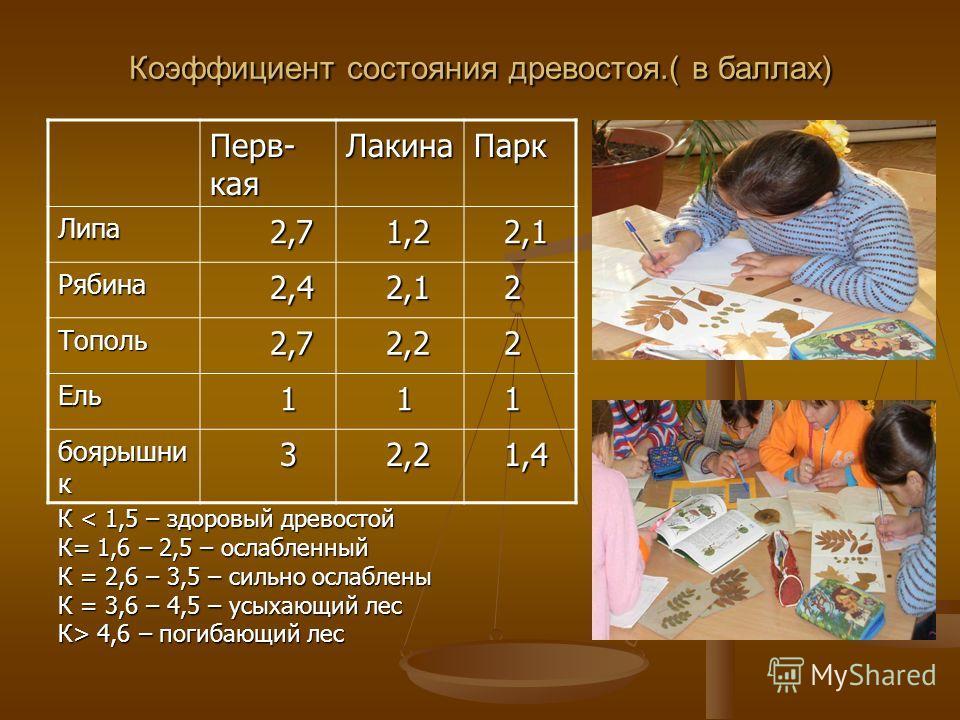 Коэффициент состояния древостоя.( в баллах) Перв- кая ЛакинаПарк Липа 2,7 2,7 1,2 1,2 2,1 2,1 Рябина 2,4 2,4 2,1 2,1 2 Тополь 2,7 2,7 2,2 2,2 2 Ель 1 1 1 боярышни к 3 2,2 2,2 1,4 1,4 К < 1,5 – здоровый древостой К= 1,6 – 2,5 – ослабленный К = 2,6 – 3