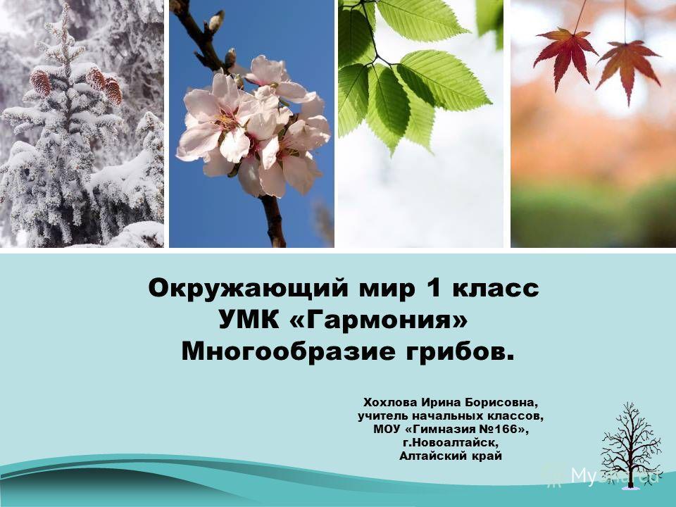 Новоалтайск алтайский презентация