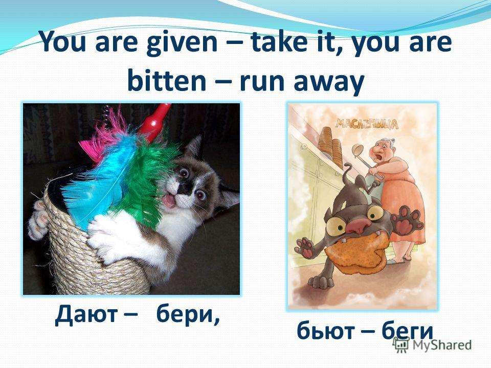 You are given – take it, you are bitten – run away Дают – бери, бьют – беги