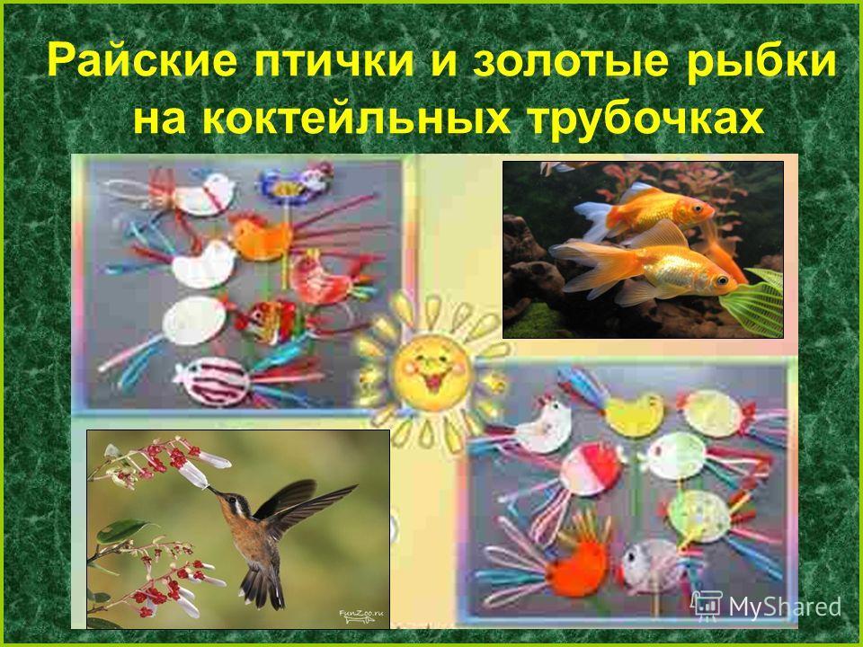 Райские птички и золотые рыбки на коктейльных трубочках