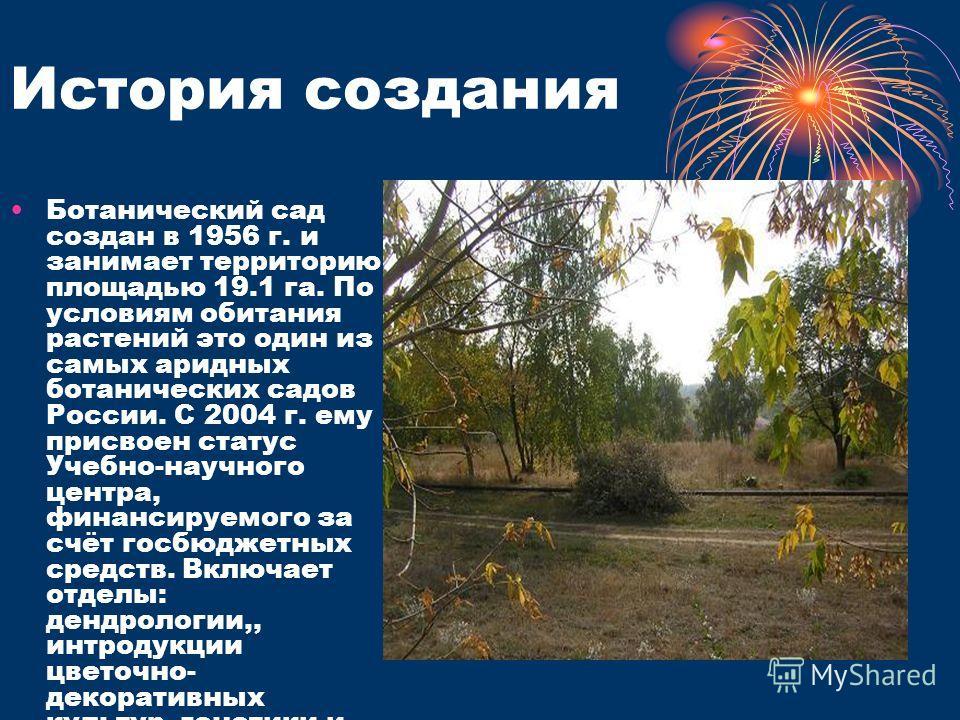 Ботанический сад создан в 1956 г. и занимает территорию площадью 19.1 га. По условиям обитания растений это один из самых аридных ботанических садов России. С 2004 г. ему присвоен статус Учебно-научного центра, финансируемого за счёт госбюджетных сре
