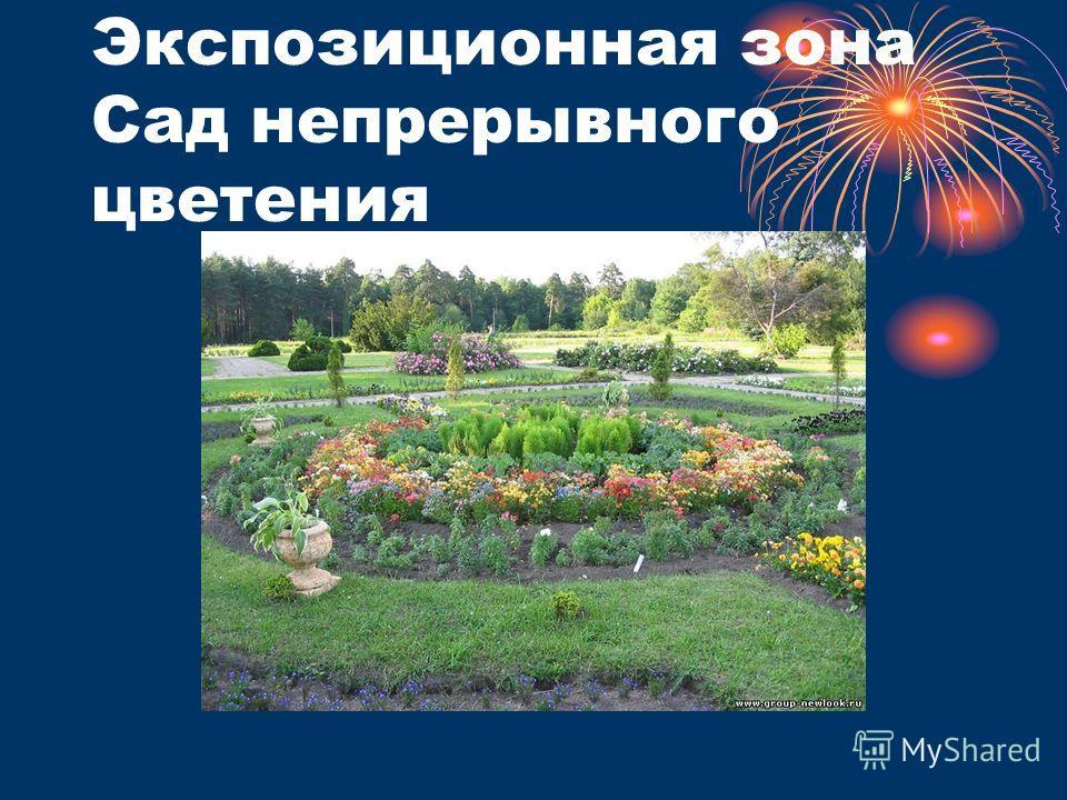 Экспозиционная зона Сад непрерывного цветения