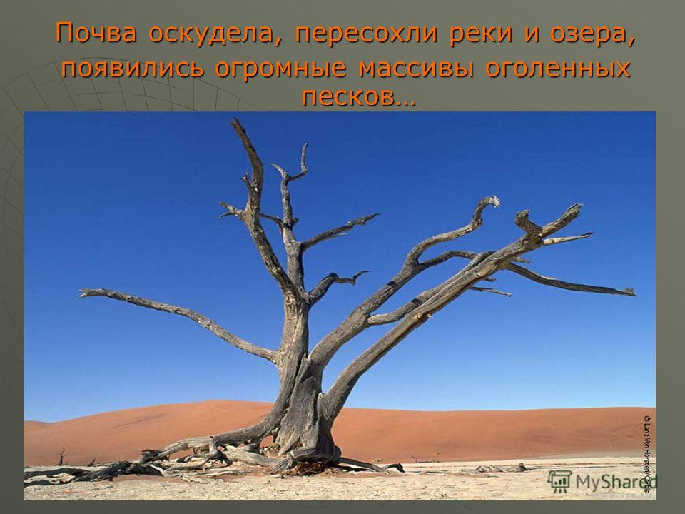 Почва оскудела, пересохли реки и озера, появились огромные массивы оголенных песков…