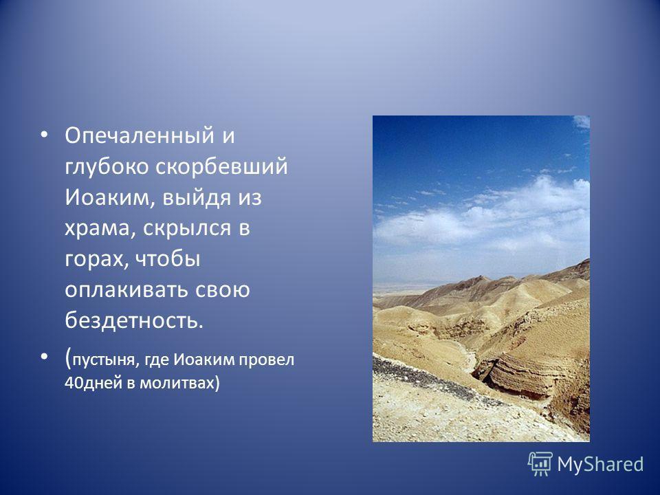 Опечаленный и глубоко скорбевший Иоаким, выйдя из храма, скрылся в горах, чтобы оплакивать свою бездетность. ( пустыня, где Иоаким провел 40дней в молитвах)