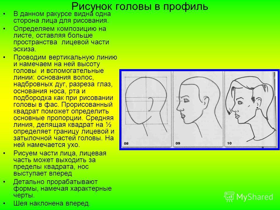 Рисунок головы в профиль В данном ракурсе видна одна сторона лица для рисования. Определяем композицию на листе, оставляя больше пространства лицевой части эскиза. Проводим вертикальную линию и намечаем на ней высоту головы и вспомогательные линии: о