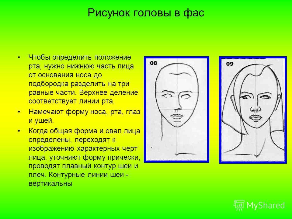 Рисунок головы в фас Чтобы определить положение рта, нужно нижнюю часть лица от основания носа до подбородка разделить на три равные части. Верхнее деление соответствует линии рта. Намечают форму носа, рта, глаз и ушей. Когда общая форма и овал лица