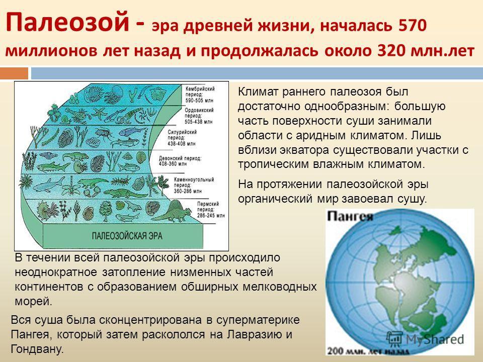 Палеозой - эра древней жизни, началась 570 миллионов лет назад и продолжалась около 320 млн. лет Вся суша была сконцентрирована в суперматерике Пангея, который затем раскололся на Лавразию и Гондвану. На протяжении палеозойской эры органический мир з