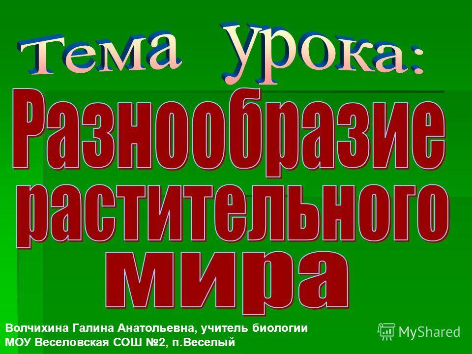 Волчихина Галина Анатольевна, учитель биологии МОУ Веселовская СОШ 2, п.Веселый