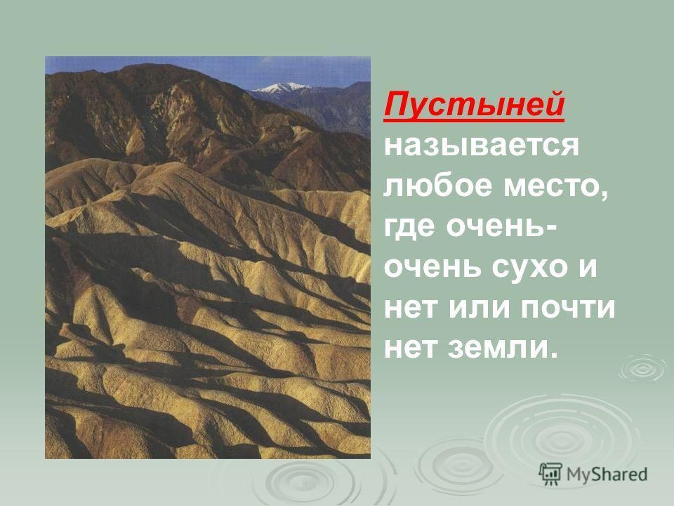 Пустыней называется любое место, где очень- очень сухо и нет или почти нет земли.