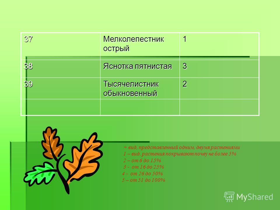 37 Мелколепестник острый 1 38 Яснотка пятнистая 3 39 Тысячелистник обыкновенный 2 + вид, представленный одним, двумя растениями 1 – вид, растения покрывают почву не более 5% 2 – от 6 до 15% 3 - от 16 до 25% 4 - от 26 до 50% 5 – от 51 до 100%