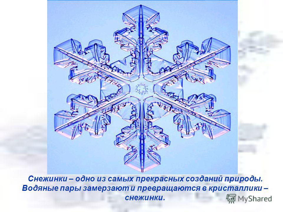 Снежинки – одно из самых прекрасных созданий природы. Водяные пары замерзают и превращаются в кристаллики – снежинки.