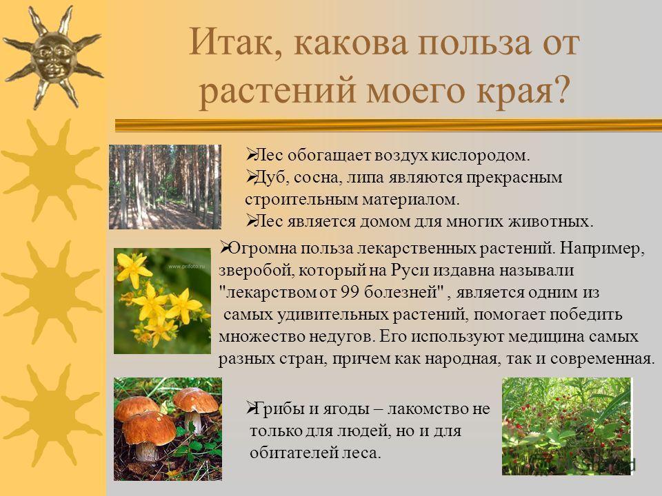 Итак, какова польза от растений моего края? Лес обогащает воздух кислородом. Дуб, сосна, липа являются прекрасным строительным материалом. Лес является домом для многих животных. Огромна польза лекарственных растений. Например, зверобой, который на Р