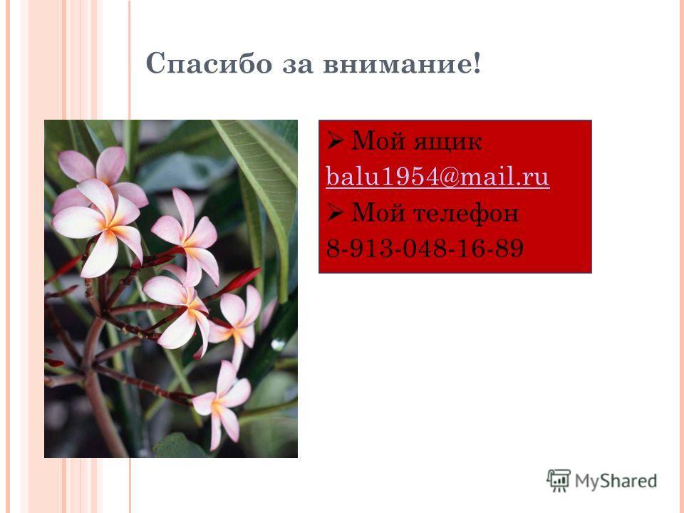Спасибо за внимание! Мой ящик balu1954@mail.ru Мой телефон 8-913-048-16-89