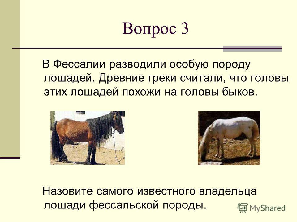 Вопрос 3 В Фессалии разводили особую породу лошадей. Древние греки считали, что головы этих лошадей похожи на головы быков. Назовите самого известного владельца лошади фессальской породы.