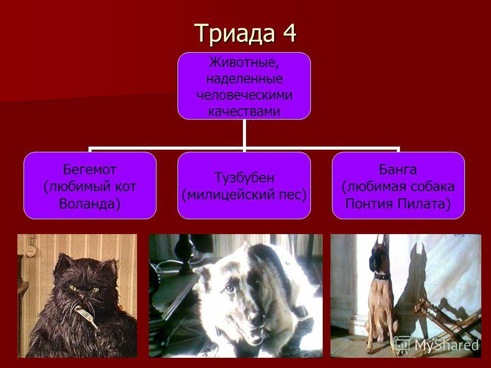 Триада 4 Животные, наделенные человеческими качествами Бегемот (любимый кот Воланда) Тузбубен (милицейский пес) Банга (любимая собака Понтия Пилата)