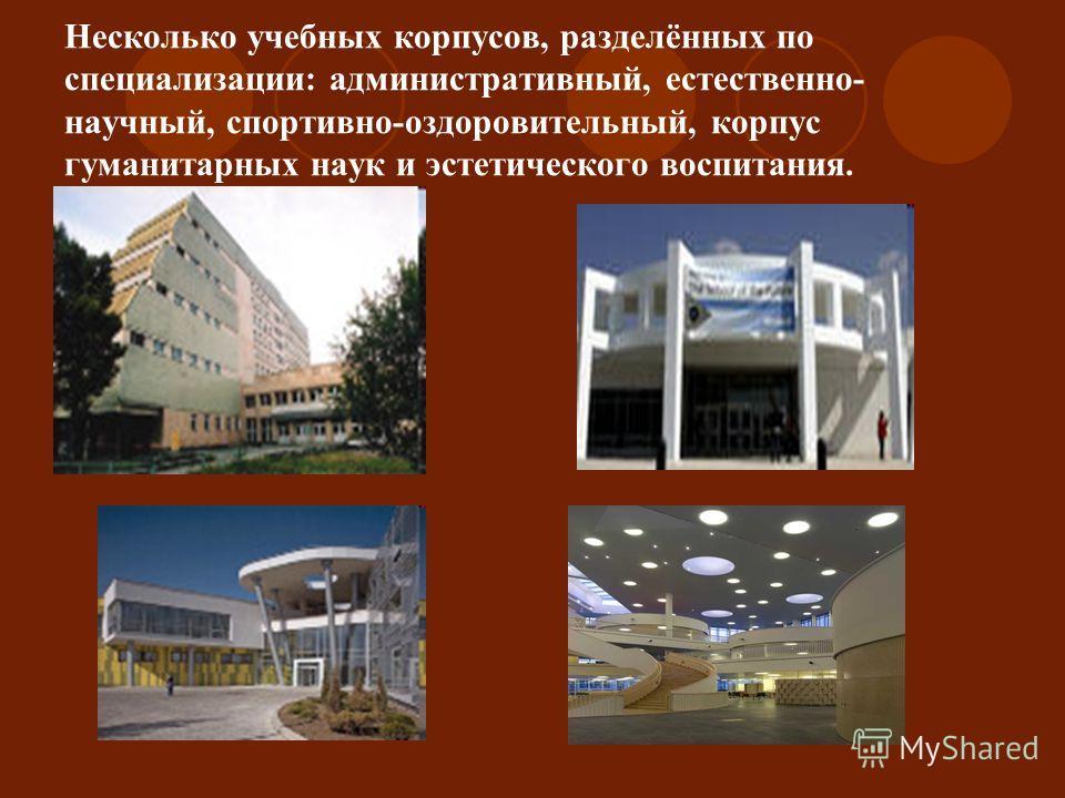 Несколько учебных корпусов, разделённых по специализации: административный, естественно- научный, спортивно-оздоровительный, корпус гуманитарных наук и эстетического воспитания.