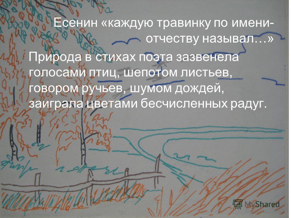 Есенин «каждую травинку по имени- отчеству называл…» Природа в стихах поэта зазвенела голосами птиц, шепотом листьев, говором ручьев, шумом дождей, заиграла цветами бесчисленных радуг.