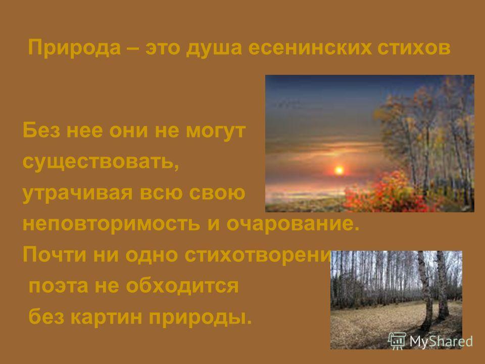 Природа – это душа есенинских стихов Без нее они не могут существовать, утрачивая всю свою неповторимость и очарование. Почти ни одно стихотворение поэта не обходится без картин природы.