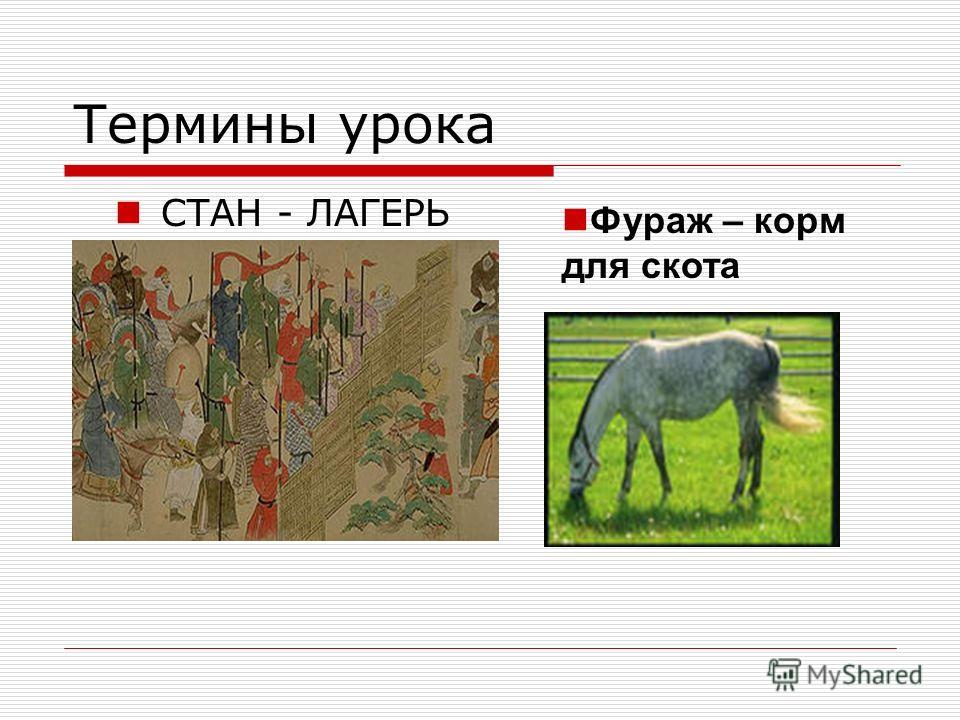 Термины урока СТАН - ЛАГЕРЬ Фураж – корм для скота
