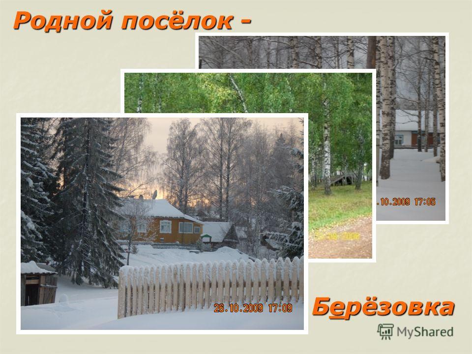 Родной посёлок - Родной посёлок - Берёзовка