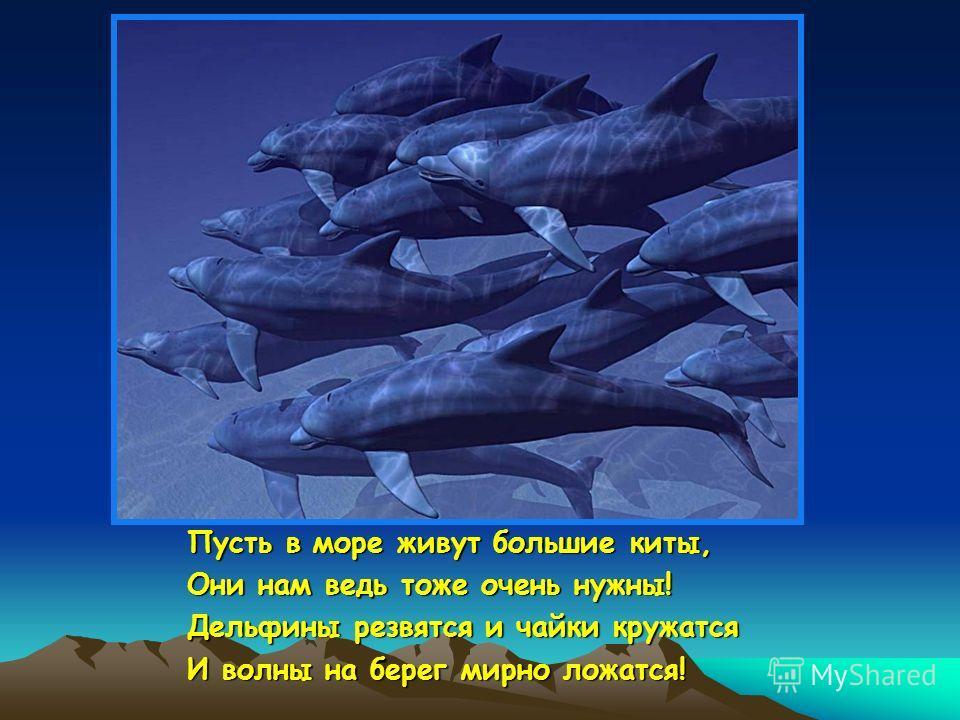Пусть в море живут большие киты, Они нам ведь тоже очень нужны! Дельфины резвятся и чайки кружатся И волны на берег мирно ложатся!