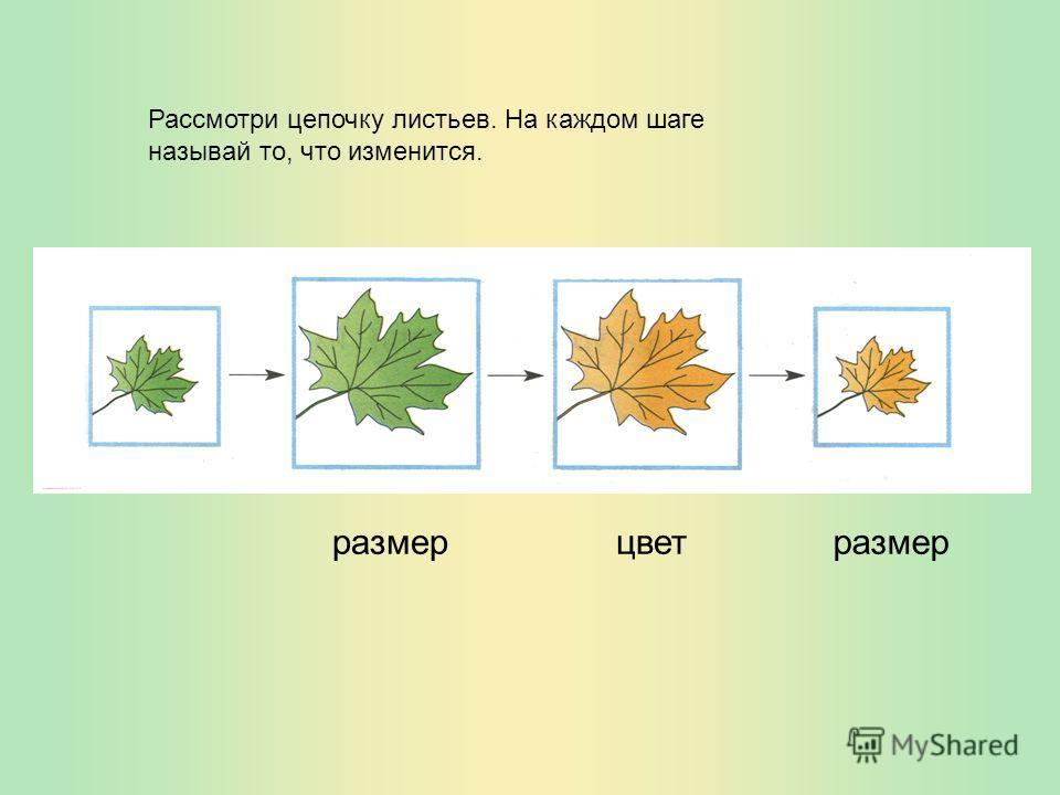 Рассмотри цепочку листьев. На каждом шаге называй то, что изменится. размерразмерцвет