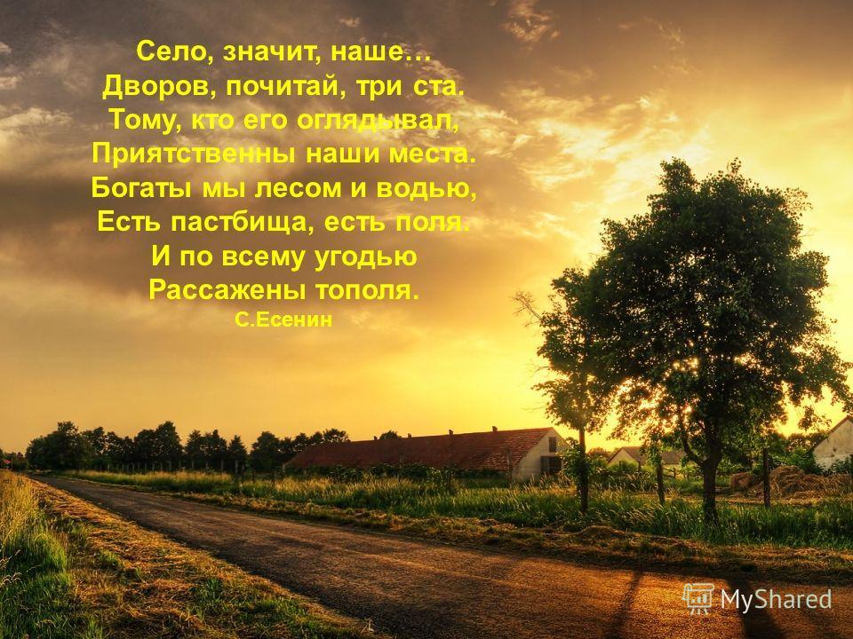 Село, значит, наше… Дворов, почитай, три ста. Тому, кто его оглядывал, Приятственны наши места. Богаты мы лесом и водью, Есть пастбища, есть поля. И по всему угодью Рассажены тополя. С.Есенин