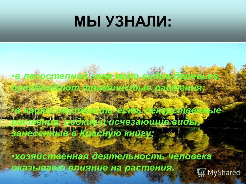 МЫ УЗНАЛИ: в лесостепной зоне мало видов деревьев, преобладают травянистые растения; в нашей местности есть лекарственные растения, редкие и исчезающие виды, занесенные в Красную книгу; хозяйственная деятельность человека оказывает влияние на растени
