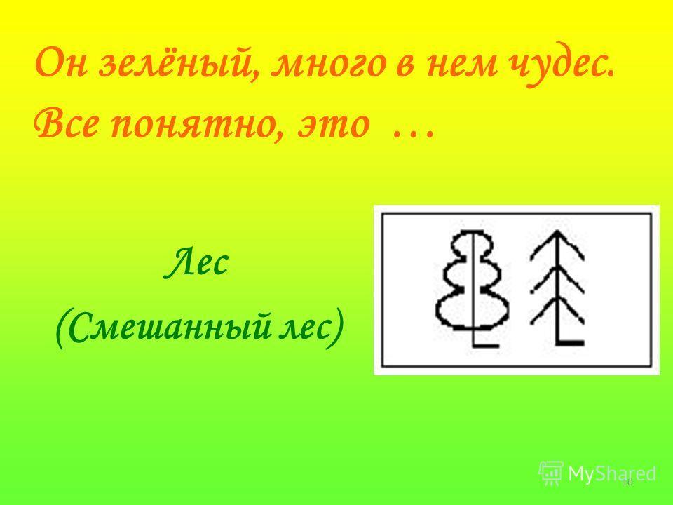 10 Он зелёный, много в нем чудес. Все понятно, это … Лес (Смешанный лес)