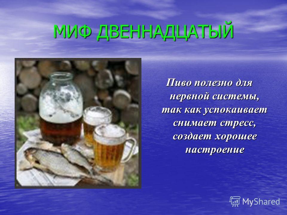 МИФ ДВЕННАДЦАТЫЙ Пиво полезно для нервной системы, так как успокаивает снимает стресс, создает хорошее настроение