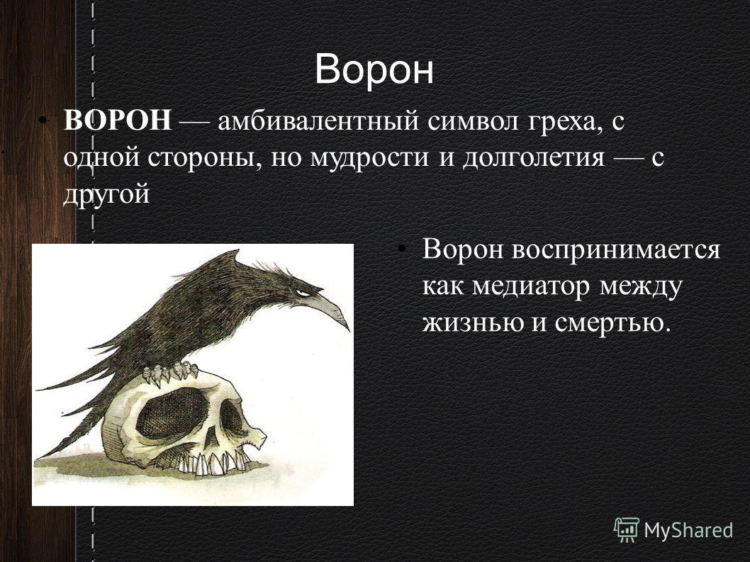 Ворон ВОРОН амбивалентный символ греха, с одной стороны, но мудрости и долголетия с другой Ворон воспринимается как медиатор между жизнью и смертью..