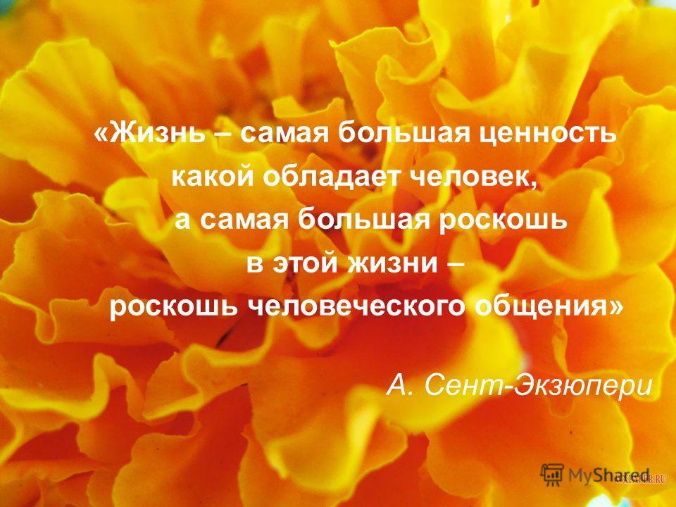 «Жизнь – самая большая ценность какой обладает человек, а самая большая роскошь в этой жизни – роскошь человеческого общения» А. Сент-Экзюпери
