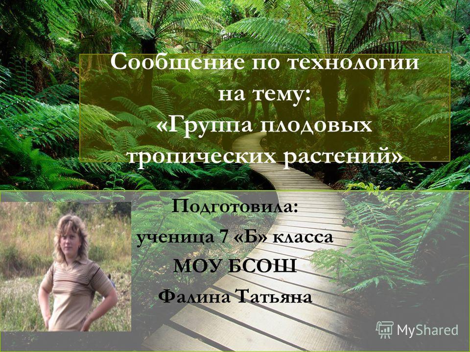 Сообщение по технологии на тему: «Группа плодовых тропических растений» Подготовила: ученица 7 «Б» класса МОУ БСОШ Фалина Татьяна
