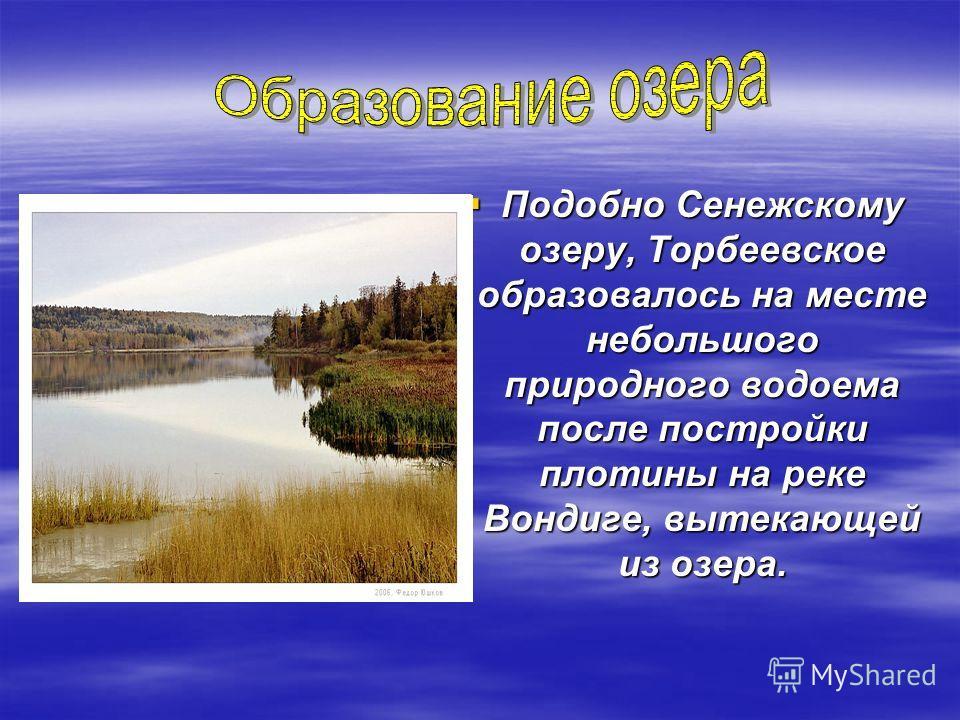 Подобно Сенежскому озеру, Торбеевское образовалось на месте небольшого природного водоема после постройки плотины на реке Вондиге, вытекающей из озера. Подобно Сенежскому озеру, Торбеевское образовалось на месте небольшого природного водоема после по