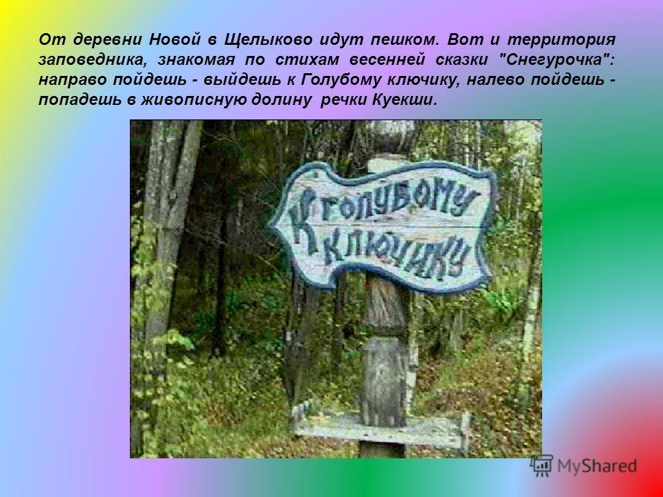 От деревни Новой в Щелыково идут пешком. Вот и территория заповедника, знакомая по стихам весенней сказки Снегурочка: направо пойдешь - выйдешь к Голубому ключику, налево пойдешь - попадешь в живописную долину речки Куекши.