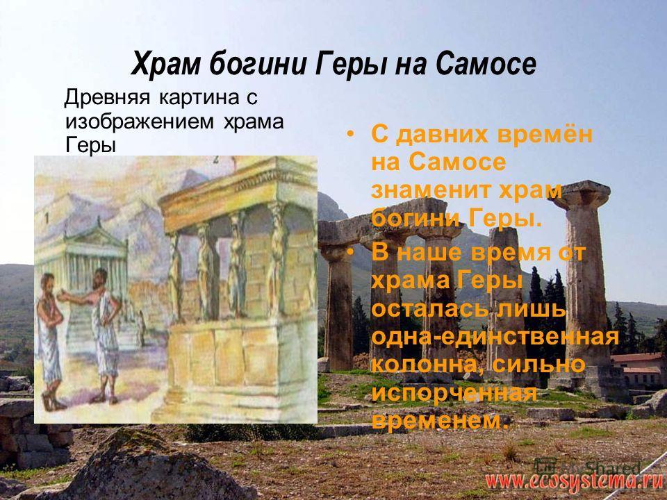 Храм богини Геры на Самосе Древняя картина с изображением храма Геры С давних времён на Самосе знаменит храм богини Геры. В наше время от храма Геры осталась лишь одна-единственная колонна, сильно испорченная временем.