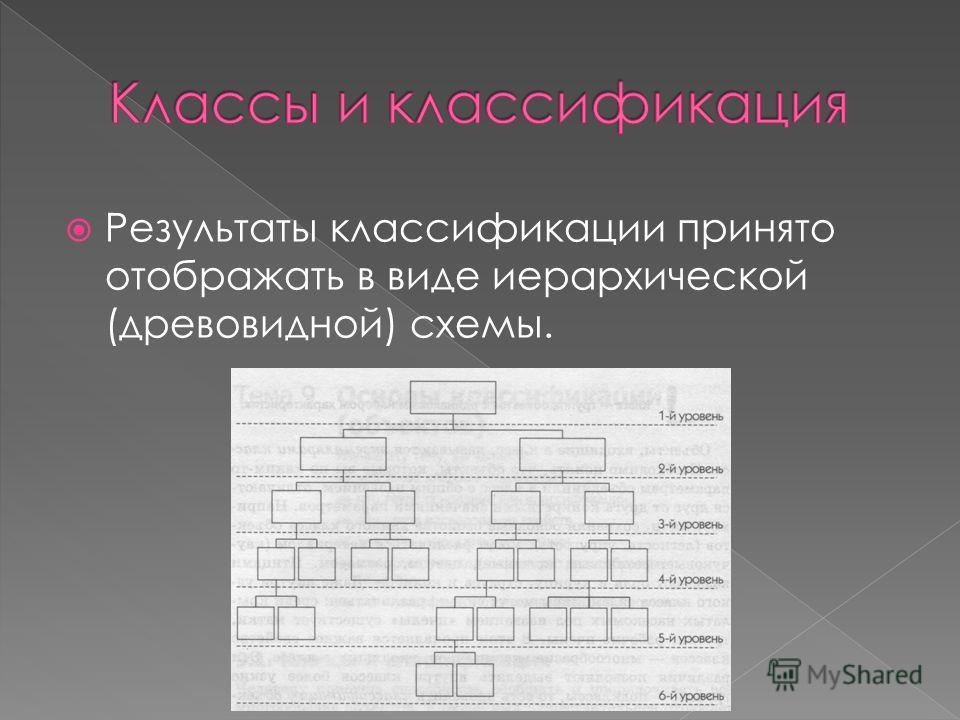 Результаты классификации принято отображать в виде иерархической (древовидной) схемы.