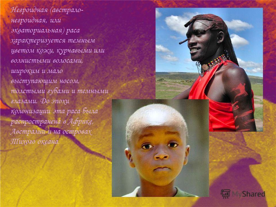 Негроидная (австрало- негроидная, или экваториальная) раса характеризуется темным цветом кожи, курчавыми или волнистыми волосами, широким и мало выступающим носом, толстыми губами и темными глазами. До эпохи колонизации эта раса была распространена в
