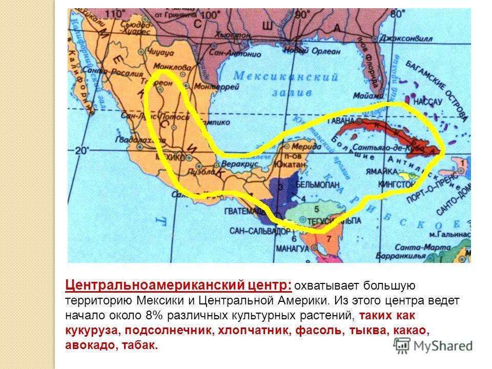 Центральноамериканский центр: охватывает большую территорию Мексики и Центральной Америки. Из этого центра ведет начало около 8% различных культурных растений, таких как кукуруза, подсолнечник, хлопчатник, фасоль, тыква, какао, авокадо, табак.