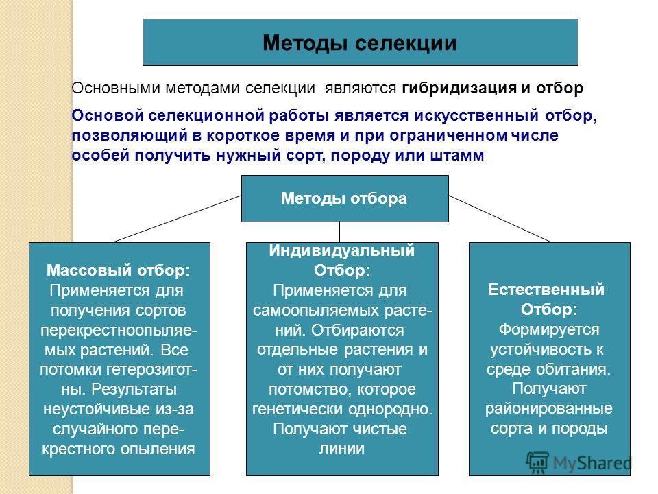 Методы селекции Основными